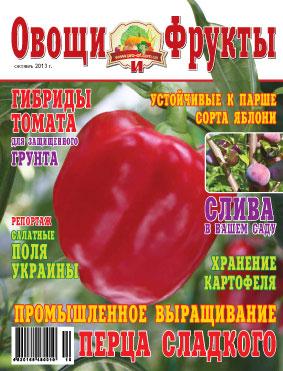 Журнал №10 2013 года