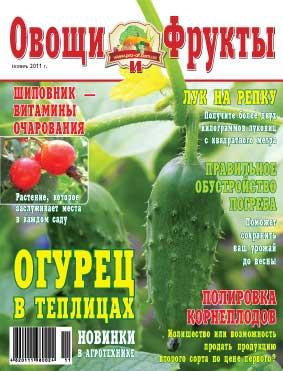 Журнал №11 2011 года