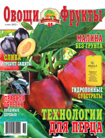 Журнал №11 2012 года