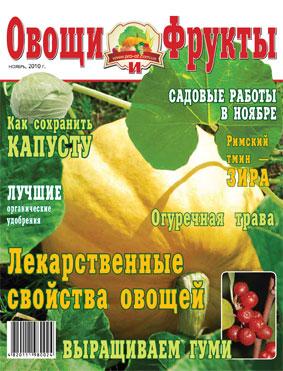 Журнал №11 2010 года