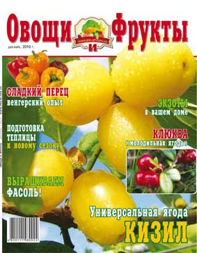 Журнал №12 2010 года