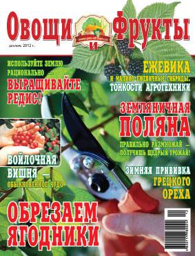 Журнал №12 2012 года