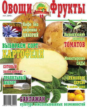 Журнал №3 2010 года