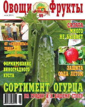 Журнал №6 2013 года