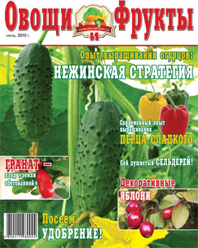 Журнал №6 2010 года