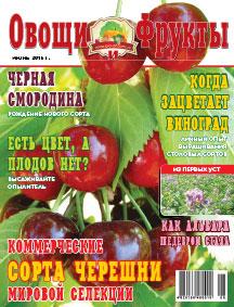 Журнал №6 2015 года