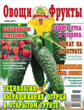 Журнал №6 2017 года